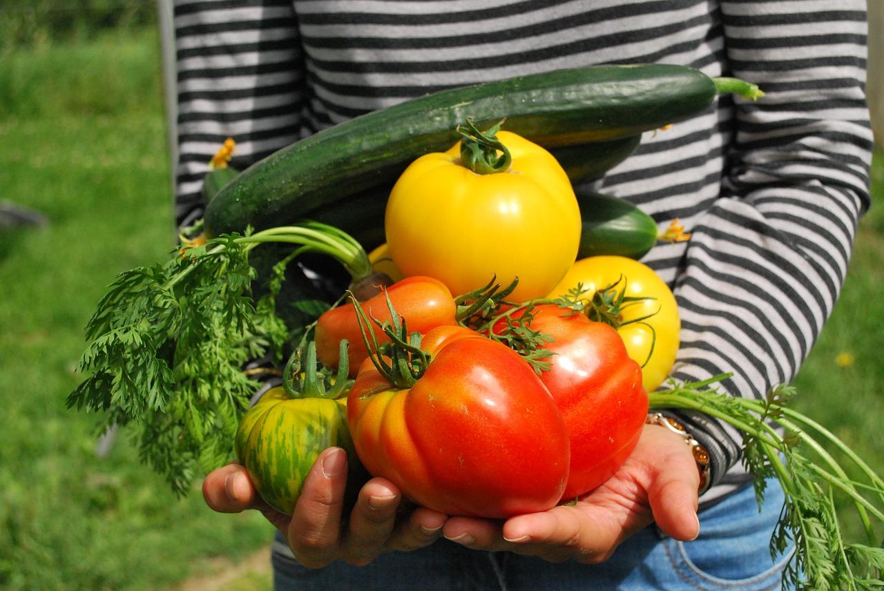 Bilologische Saatgut, gut für Mensch und Natur